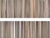 skinscan-Heimat-2-Kopie